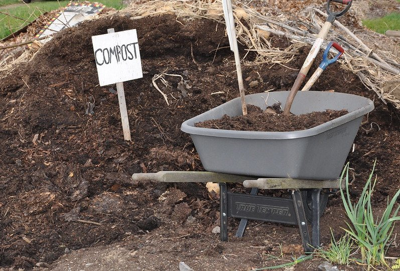 Wheelbarrow next to compost heap.