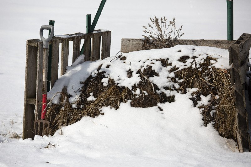 Compost heap covered in snow