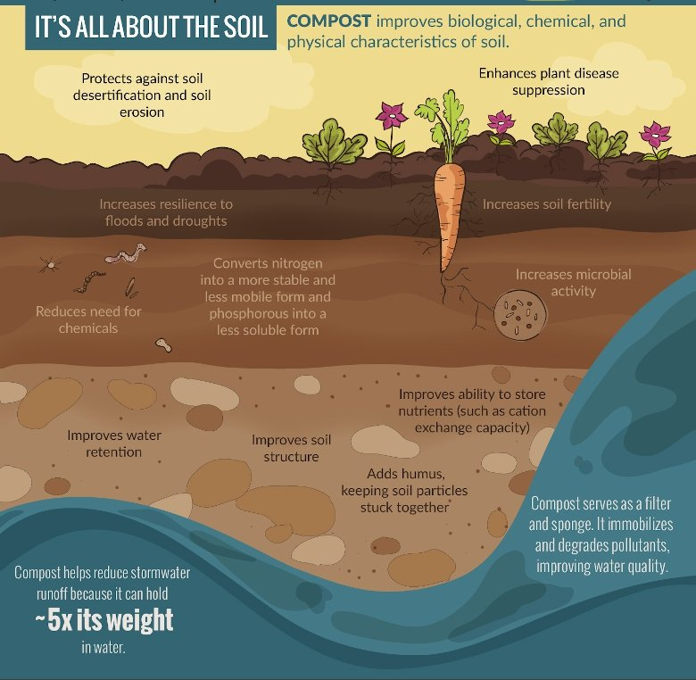Infographic demonstrating benefits of compost for soil.