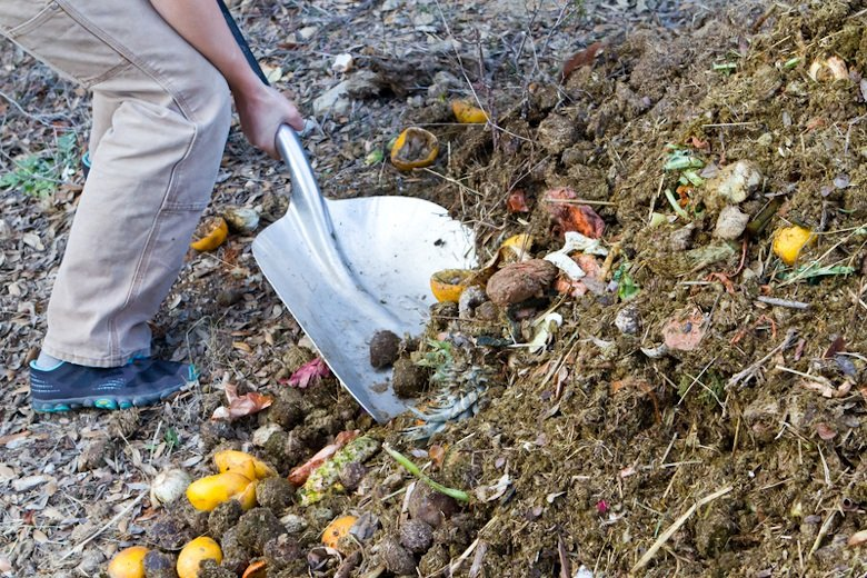 Turning compost with a spade.