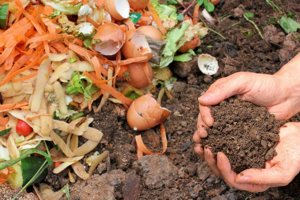 Best Kitchen Compost Bin to Use