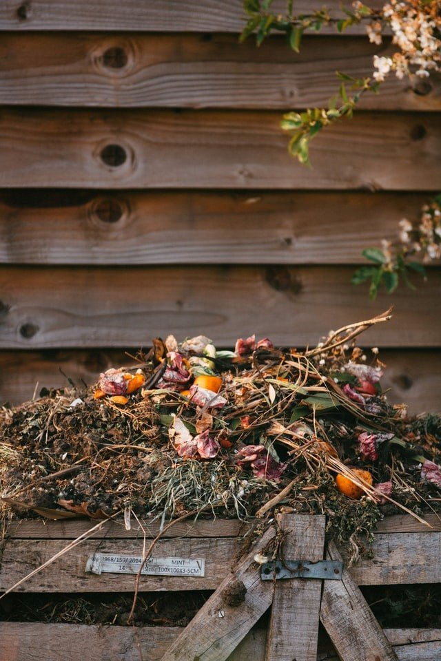 Fruits & Vegetables Waste in Compost