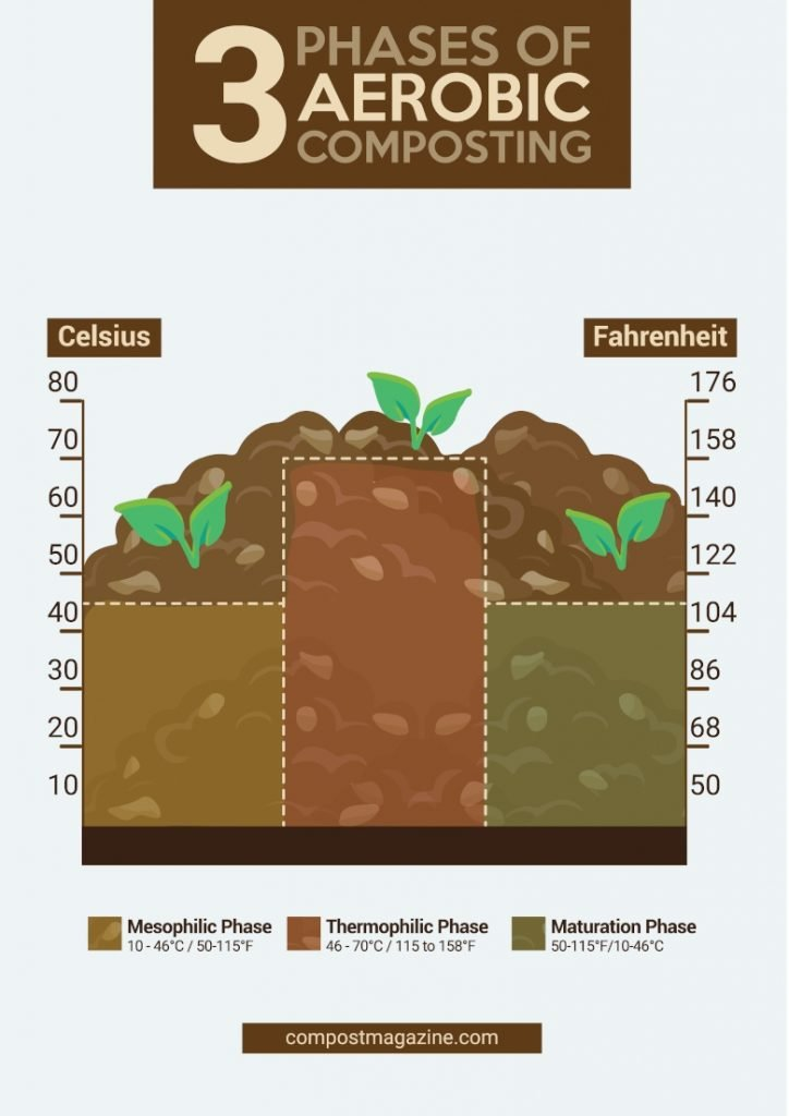 Infographic demonstrating the three phases of compost. Royalty free - licensed under a Creative Commons Attribution 4.0 International License and can be re-used with attribution to this post.