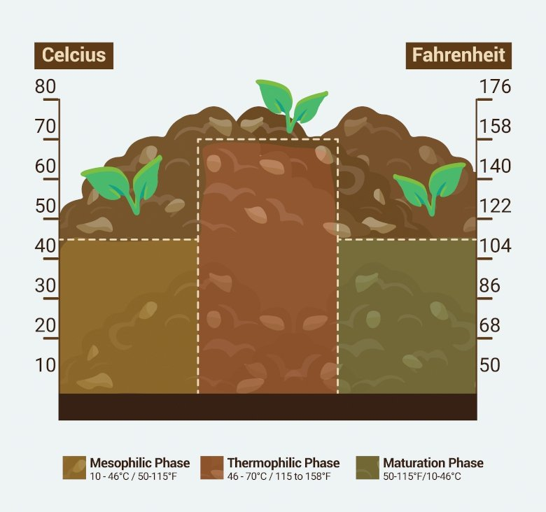 The stages of composting image.