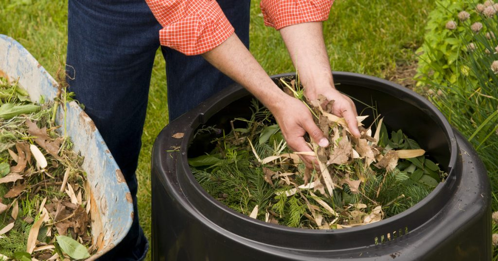 Woman putting leaves into wheelbarrow ready for the compost shredder.