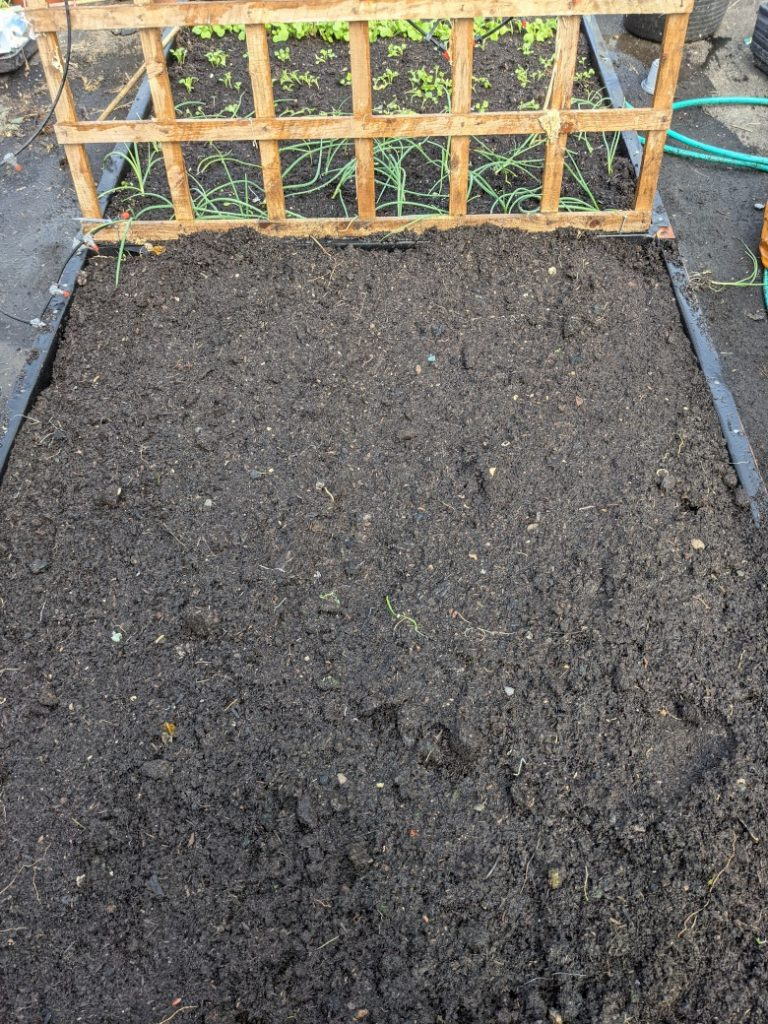 Dark, mature compost in a raised bed.
